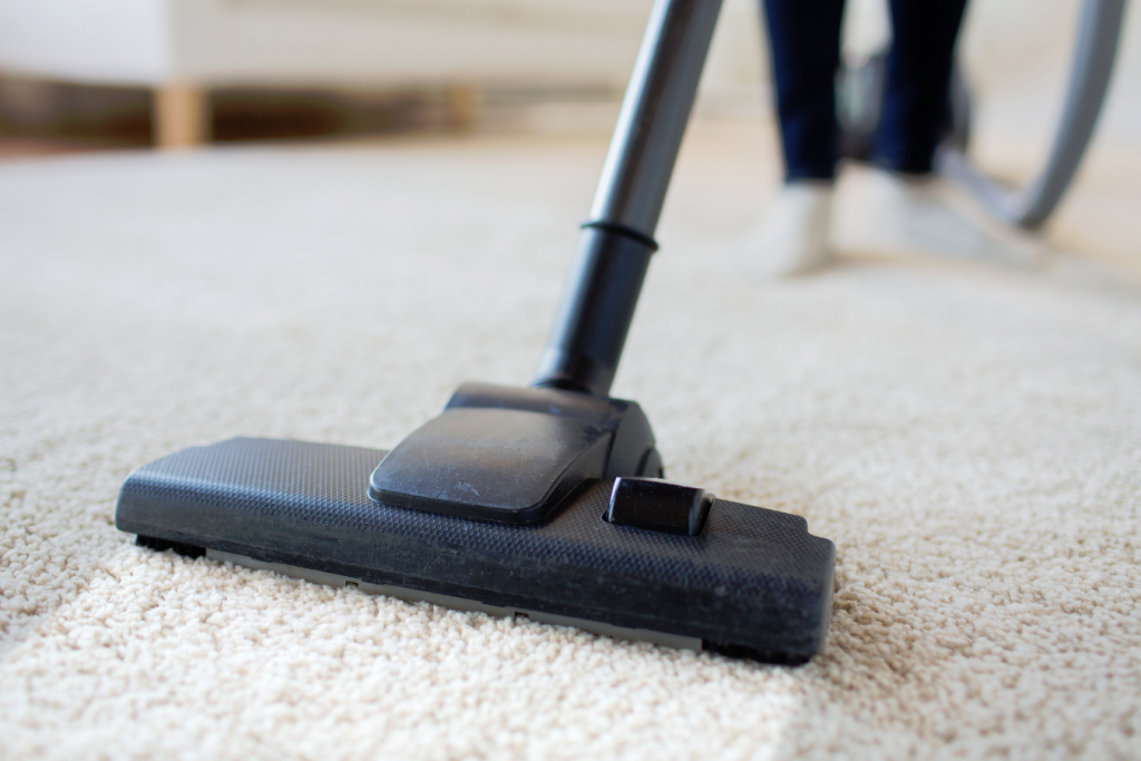 Carpet Cleaning In Alexandria Fairfax Sterling