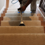 top carpet cleaning company in Arlington VA
